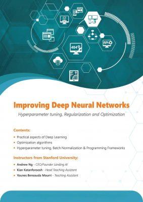 Improving Deep Neural Networks